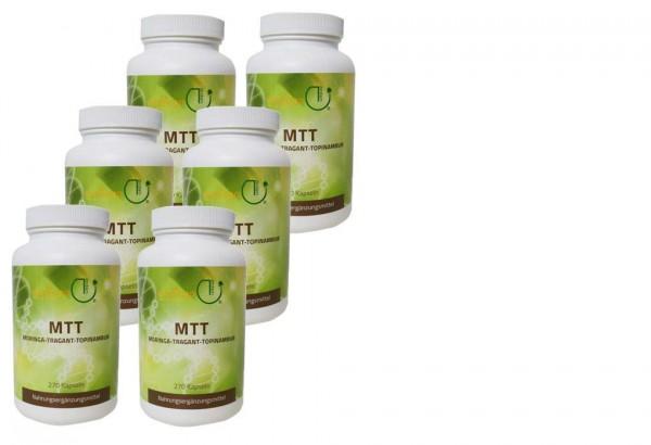 MTT-Kapseln - Jahresration + B. subtilis DSM 21097